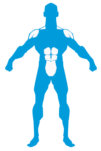 Abdomen hombros trapecio