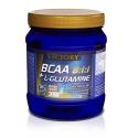 BCAA 8:1:1 + L-Glutamine 500 gr